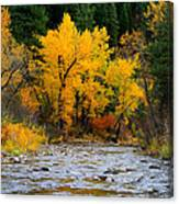 Autumn Beauty In Boise County Canvas Print