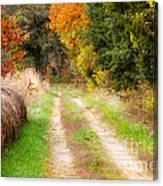 Autumn Beauty On Rural Dirt Road Canvas Print