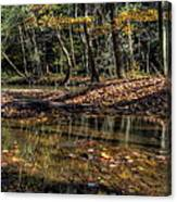 Autumn Beauty Scene Canvas Print