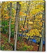 Autumn Below Canvas Print