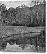 Autumn Black And White Canvas Print