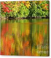 Autumn Brilliance Canvas Print