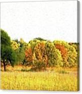 Autumn Canvas Canvas Print