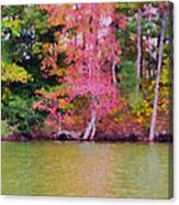 Autumn Color In Norfolk Botanical Garden 1 Canvas Print