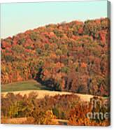 Autumn Color On Rolling Hills Canvas Print