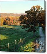 Autumn Color On Rolling Hills And Farmland Canvas Print