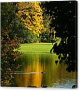 Autumn Colors 2 Canvas Print