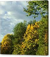 Autumn Colors 6 Canvas Print
