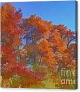 Autumn Colors I Digital Paint Canvas Print