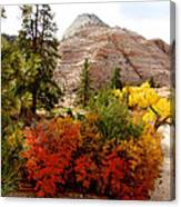 Autumn Colors In Zion's Highlands-ut Canvas Print