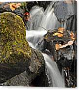 Autumn Colors On Big Crabtree Creek Canvas Print