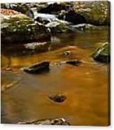 Autumn Colors On Little River Canvas Print