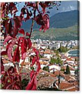 Autumn Colour - Ohrid - Macedonia Canvas Print