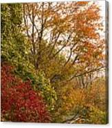Autumn Comes To The Burbs Canvas Print