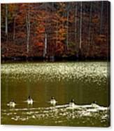 Autumn Cove Canvas Print