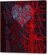 Autumn-crisp And Bright Canvas Print