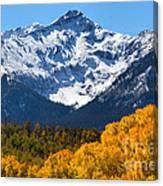 Autumn Curtains Canvas Print