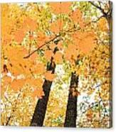 Autumn Days Canvas Print