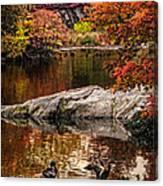 Autumn Duck Couple Canvas Print
