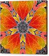 Autumn Equinox Canvas Print