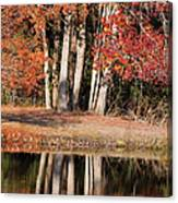 Autumn Essence Canvas Print