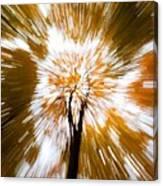 Autumn Explosion Canvas Print