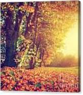 Autumn Fall Landscape In Park Canvas Print