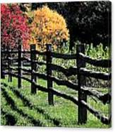 Autumn Fence And Shadows Canvas Print