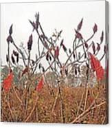 Autumn Fields Canvas Print