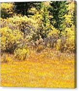 Autumn Fire In The Grass Canvas Print
