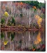 Autumn Foliage River Reflection Canvas Print
