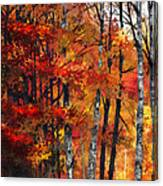 Autumn Glory I Canvas Print