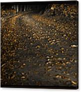 Autumn Gold Canvas Print