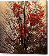 Autumn Goodbyes Canvas Print
