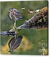 Autumn Green Canvas Print