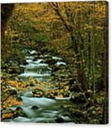 Autumn Greenbriar Cascade Canvas Print