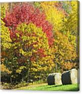 Autumn Hay Being Harvested In Maine Canvas Print