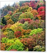 Autumn Highland Scenic Highway Canvas Print