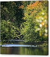 Autumn Highlights On The Quinnebaug River Canvas Print