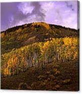 Autumn Hillside Canvas Print