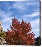 Autumn In Glenwood Canyon - Colorado Canvas Print