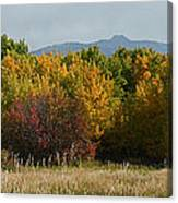 Autumn In Idaho Canvas Print