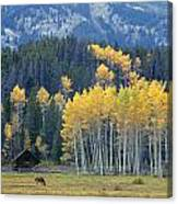 1m9359-autumn In Jackson Hole Ranch Country Canvas Print