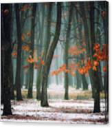 Autumn In My Soul Canvas Print