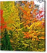 Autumn In Southwest Michigan Canvas Print