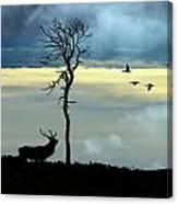 Autumn In Strathglass Canvas Print