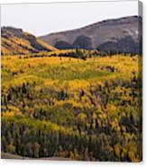 Autumn In The Colorado Mountains Canvas Print