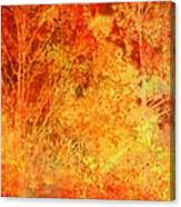 Autumn In The Country Canvas Print
