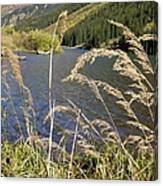 Autumn In The Maroon Bells Canvas Print