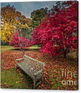 Autumn In The Park Canvas Print